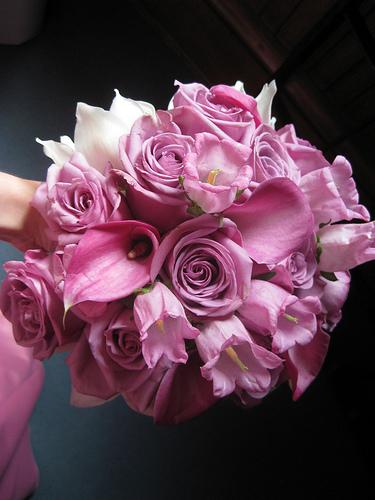 Flowers photo 16