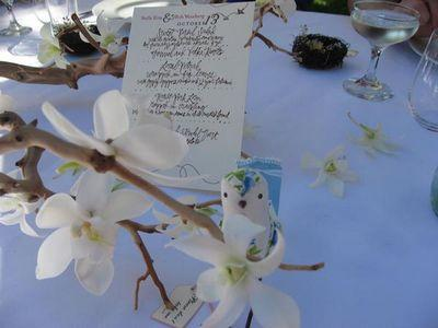 Mrs. Gummibear's tabletop - orchids,